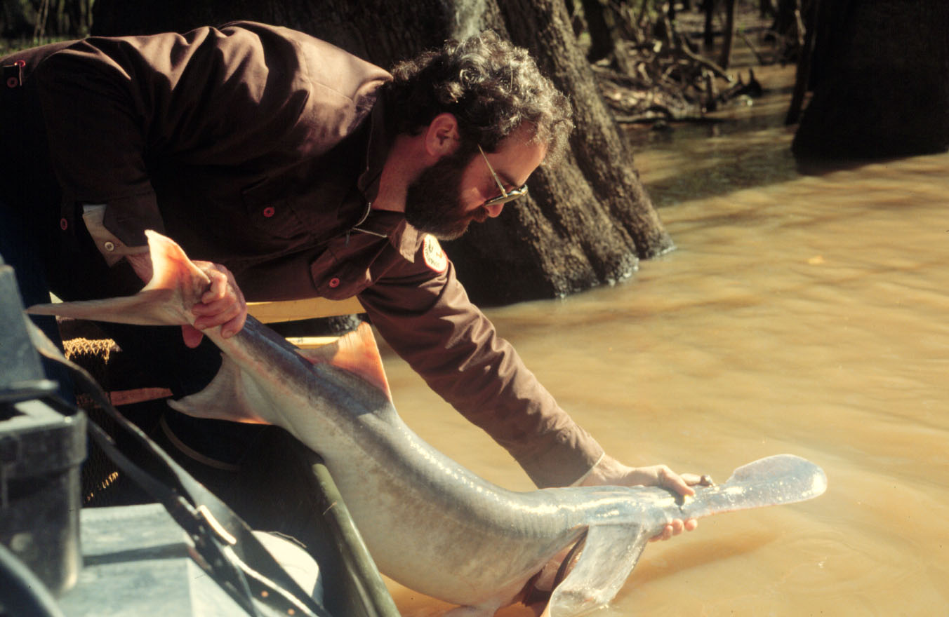 MICRA Man releasing fish